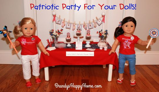 patriotic party for dolls
