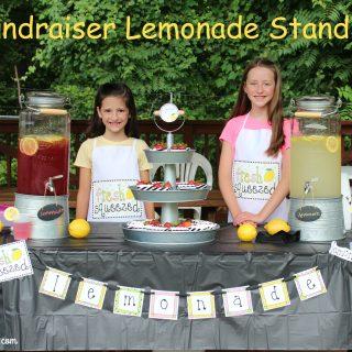 Fundraiser Lemonade Stand