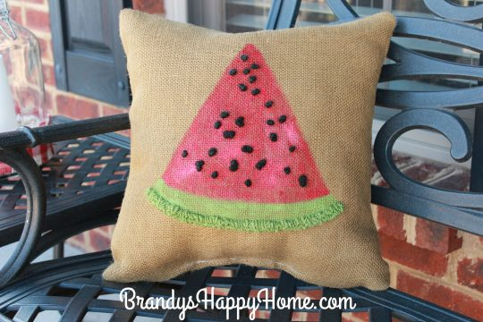 watermelon porch pillows