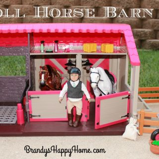 Lori Doll Horse Barn Review