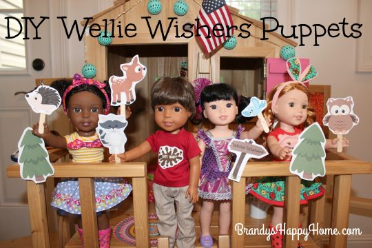 diy-wellie-wisher-puppets