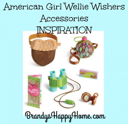 american-girl-wellie-wisher-accessories