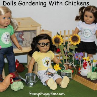 Doll Gardens & Chickens