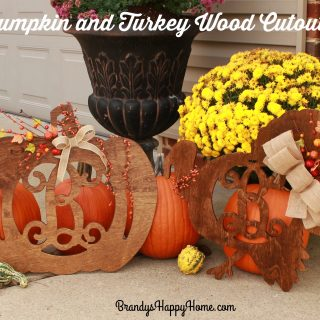 Pumpkin and Turkey Wood Cutouts